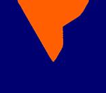 Vality Corp Logo